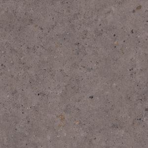 Biophilic Dark Grey 80×80 cm