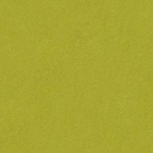 Color Lino Lime